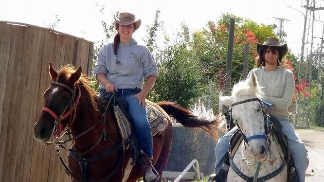 «Техасское ранчо» и лошади для Голливуда
