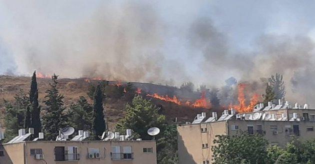 Огонь над Холодным парком